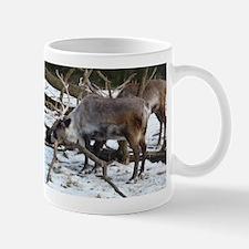 horny beast Mug