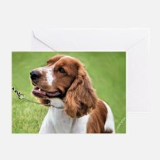 Welsh Springer Spaniel Greeting Cards (Package of
