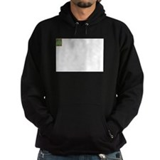 FunnyMazeBookCover Hoodie