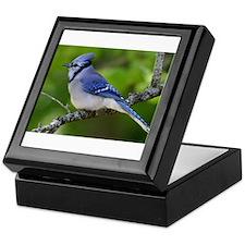 Happy Blue Jay Keepsake Box