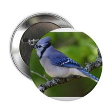 """Happy Blue Jay 2.25"""" Button"""