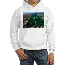 centrall park Hoodie
