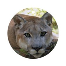 Cougar named Shadow Ornament (Round)