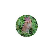 chipmunk Mini Button
