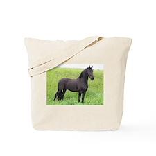 Friesian 1 Tote Bag
