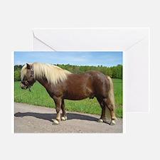 Pretty Chestnut Pony Greeting Card
