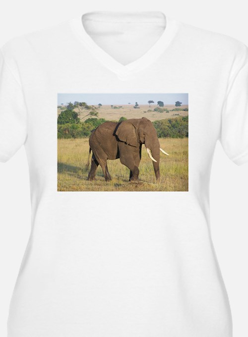 African Elephant Plus Size T-Shirt