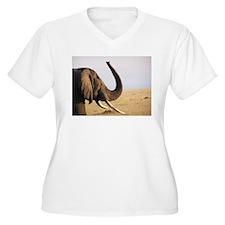 Masai Mara Elephant Plus Size T-Shirt
