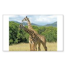 Mara Giraffes Decal