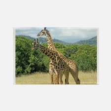 Mara Giraffes Rectangle Magnet