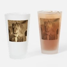 African Lioness Drinking Glass