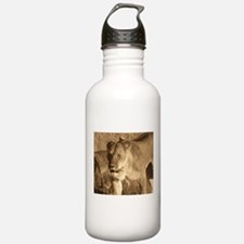 African Lioness Water Bottle