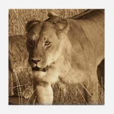 African Lioness Tile Coaster