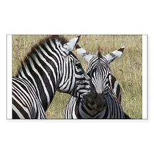 Mara Zebras Decal