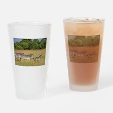 Africa Zebra Herd Drinking Glass