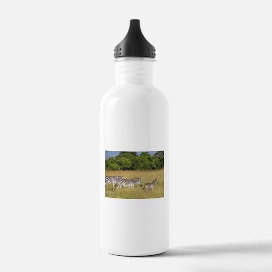 Africa Zebra Herd Water Bottle