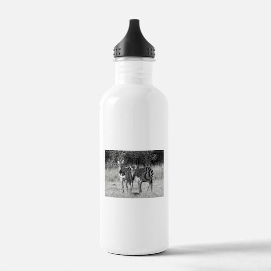 Gossiping Zebras Water Bottle