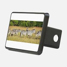 Dazzle of Zebras Hitch Cover