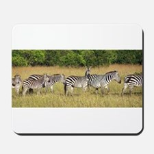 Dazzle of Zebras Mousepad