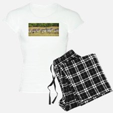 Dazzle of Zebras Pajamas