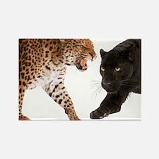 Big Cats Rectangle Magnet