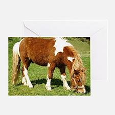 Hungry Pony Greeting Card