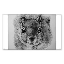 Squirrel Sketch 2 Decal