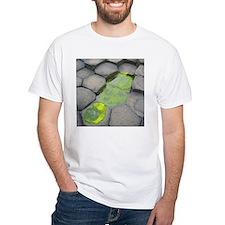 Giant's Causeway Shirt