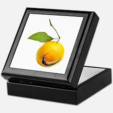 Slug Fruit Keepsake Box