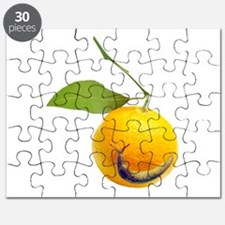 Slug Fruit Puzzle
