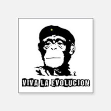 Human Evolution Sticker