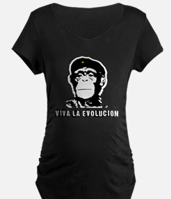 Human Evolution Maternity T-Shirt