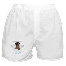 Ridge 3 Boxer Shorts
