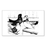 Koros Tumbler Pigeons Sticker
