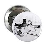 """Koros Tumbler Pigeons 2.25"""" Button (10 pack)"""