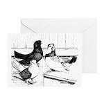 Koros Tumbler Pigeons Greeting Cards (Pk of 10)