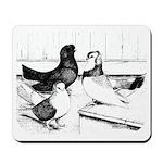 Koros Tumbler Pigeons Mousepad