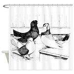 Koros Tumbler Pigeons Shower Curtain