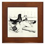 Koros Tumbler Pigeons Framed Tile