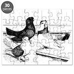 Koros Tumbler Pigeons Puzzle