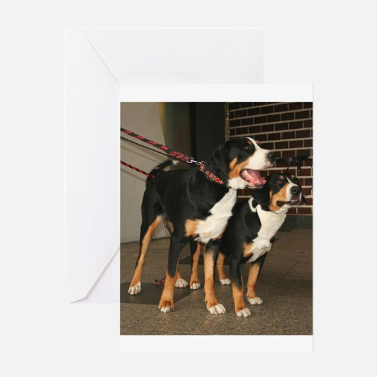 greater swiss mountain dog group Greeting Cards