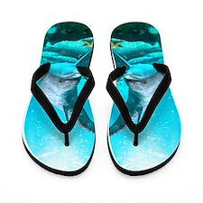 Dolphin Flip Flops
