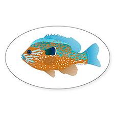 Longear Sunfish fish 2 Decal