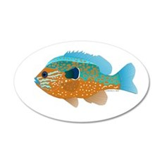 Longear Sunfish fish 2 Wall Decal
