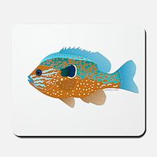 Longear Sunfish fish 2 Mousepad