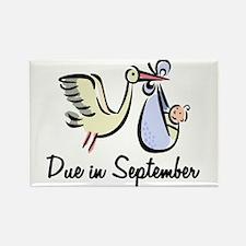 Due In September Stork Rectangle Magnet
