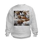 The Foxed Kids Sweatshirt