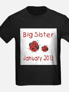 Big Sister Ladybugs 0113 T