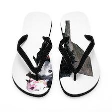 FancyPants Flip Flops