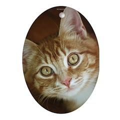 Red Tabby Kitten Oval Ornament